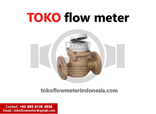 Flow Meter Itron Woltmag M – Itron 3″ 60/65mm